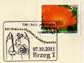 brzeg-stempel_kasownik_2011